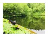 Название: 28D8EFE3-25CA-4B3C-9BB5-C6D6C4D11673 Фотоальбом: Мыс Евстафия, карьерные озёра, дорога на озеро Птичье Категория: Природа  Время съемки/редактирования: 2018:06:30 14:32:15 Фотокамера: Apple - iPhone 6s Диафрагма: f/2.2 Выдержка: 1/234 Фокусное расстояние: 83/20    Просмотров: 531 Комментариев: 0