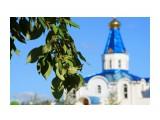 Листья на фоне церкви.  Просмотров: 1441 Комментариев: 0