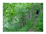Название: 2009_0808Цапко-Буруны-Цапко0250 Фотоальбом: Цапко-Буруны-Цапко Категория: Туризм, путешествия  Время съемки/редактирования: 2009:10:08 16:20:28 Фотокамера: FUJIFILM - FinePix F40fd   Диафрагма: f/2.8 Выдержка: 10/750 Фокусное расстояние: 800/100 Светочуствительность: 200   Просмотров: 378 Комментариев: 0