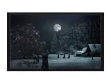 Лунная ночь в Тёплой долине  Просмотров: 1123 Комментариев: 0
