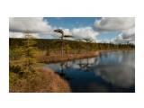 Озеро Круглое Чтобы добраться до этого озера, можно доехать на авто до Распашников, а затем пешком преодолеть подъем, заросший бамбуком курильским. Местность у озера болотистая, поэтому, если соберетесь в поход, с собой лучше иметь резиновые сапоги :)  Просмотров: 3306 Комментариев: