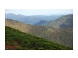 Камышовый хребет Фотограф: Mikhaylovich  Просмотров: 771 Комментариев: 0
