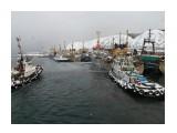 Невельский порт зимой. Фотограф: 7388PetVladVik  Просмотров: 4919 Комментариев: 0