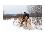 февраль на лыжах Фотограф: vikirin  Просмотров: 936 Комментариев: 0