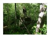 Не памятник я, а турист! И залез сюда, с горя! Дороги нету, кругом лес, а домой охота! Фотограф: viktorb  Просмотров: 1081 Комментариев: 0