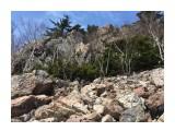 Название: Pink stones Фотоальбом: Pink stones garden Категория: Природа  Время съемки/редактирования: 2018:04:29 12:21:17 Фотокамера: Apple - iPhone 6s Диафрагма: f/2.2 Выдержка: 1/1350 Фокусное расстояние: 83/20    Просмотров: 412 Комментариев: 0