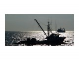 Название: Силуэты Фотоальбом: Сахалин - Курилы Категория: Море  Время съемки/редактирования: 2010:02:11 18:07:21 Фотокамера: SONY - DSC-F828 Диафрагма: f/8.0 Выдержка: 10/20000 Фокусное расстояние: 411/10    Просмотров: 589 Комментариев: 0