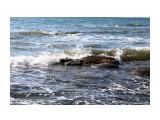 IMG_1570 Фотограф: vikirin Море теплое  Просмотров: 601 Комментариев: 0