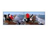 """MyCollages Создаём """"шедевр"""" из стекла и ракушек и любуемся им!!!Море, перед тем как вынести стеклышко на берег, в течение долгого времени шлифует его, доводя до совершенной формы.  Просмотров: 193 Комментариев:"""