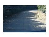 IMG_1517 Фотограф: vikirin Кружевная тень на дороге  Просмотров: 572 Комментариев: 0