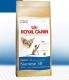 Сухой корм Royal Canin Siamese (Сиамские)