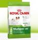 Сухой корм Royal Canin X-Small, для собак миниатюрных размеров, вес: до 4 кг