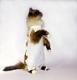 Послеоперационная попона для собак и кошек OSSO