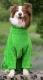 Халат банный для собак OSSO Fashion