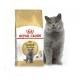 Сухой корм для кошек британской короткошерстной породы Royal Canin British Shorthair