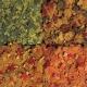 Корм для рыб Tetra Menu, мелкие хлопья 4 вида